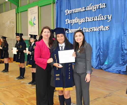 21 licenciatura
